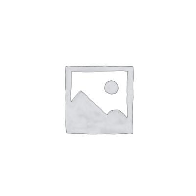 Türsprechanlagen 2-Draht